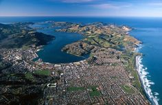 Dunedin, Otago Peninsula Harbor and Pacific Ocean (Blue), New Zealand Poster Print by David Wall x South Pacific, Pacific Ocean, Dunedin New Zealand, New Zealand Houses, St Kilda, New Zealand Travel, British Isles, Great Places, Amazing Places