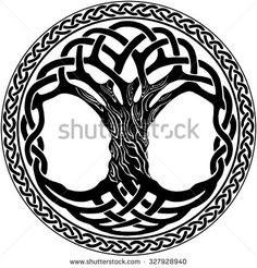 Find Vector ornament, decorative Celtic tree of life Stock Images in HD and millions of other royalty-free stock photos, illustrations, and vectors in the Shutterstock collection. Celtic Tree Tattoos, Celtic Knot Tattoo, Viking Tattoos, Tattoo Tree, Celtic Knots, Yggdrasil Tattoo, Tree Of Life Images, Tree Of Life Artwork, Tree Of Life Symbol