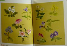 Wild Flowers Collection by Sadako Totsuka by CollectingLife
