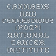 Cannabis and Cannabinoids (PDQ®) - National Cancer Institute
