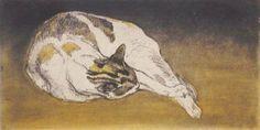 Chat Couche Allonge de Gauche a Droite   etching,1902   Theophile-Alexandre Steinlen