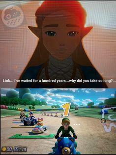 The legend of zelda what took you so long meme The Legend Of Zelda, Legend Of Zelda Memes, Legend Of Zelda Breath, Video Game Memes, Video Games, Image Zelda, Nintendo, Pokemon, Link Zelda
