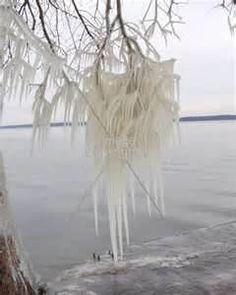 Ice, Reelfoot Lake, Tiptonville, TN - Ozark Nature Photos