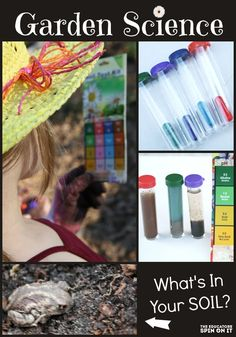Science kids in the garden, test tubes