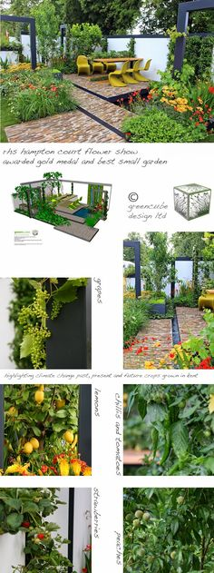 greencube garden and landscape design, UK: Great news for greencube - great garden design!