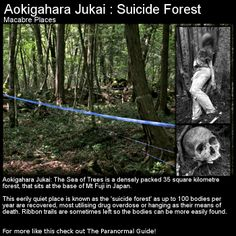 Ghost, suicide, haunting and death take place in this beautiful forest in Japan. Head to this link for the full article: http://www.theparanormalguide.com/1/post/2012/11/aokigahara-jukai-the-suicide-forest.html