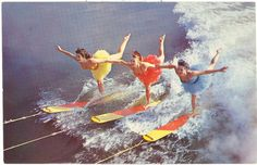 Vintage Florida Postcard - Cypress Gardens - Famed Aqua Ballerinas Skiing Skiers