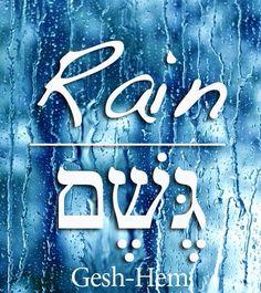 Hebrew. Tu B'Shvat. Jewish Holiday Inspiration
