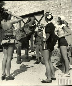 """Shot by the acclaimed photographer Nina Leen in 1949, we find our sassy subculture of circus girls in Sarasota, Florida, dubbed """"the home of..."""