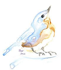 Animals Watercolor, Watercolor Pictures, Watercolor Bird, Watercolor Paintings, Watercolours, Art For Art Sake, Cute Tattoos, Art Sketchbook, Bird Art