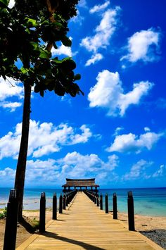 Photo by Bubuy Balangue of Studio B. Balesin Island, Places Around The World, Around The Worlds, Ocean Views, Philippines, Travel Inspiration, Beautiful Places, Heaven, Fish