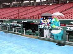 傘を差すドアラとスラィリー 広島東洋カープ公式サイト