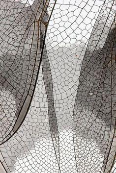 Inspiratie: grijze vleugel...   wings.