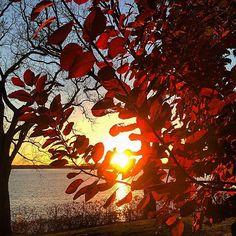 October sunset. #lakeminnetonka #minnesota #mn #exploremn #lake #minnetonka #tonka #sunset #fall #autumn