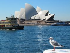 Australia d 144fl by BlackTwoNine, via Flickr