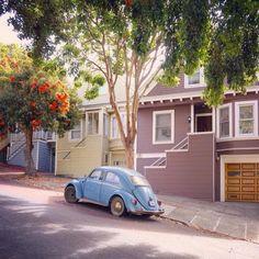 Vintage VW bug in San Francisco Best Classic Cars, San Francisco California, New Tricks, Vintage Cars, Volkswagen, Backdrops, Street, Instagram Posts, Image