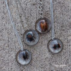 Beetles in Resin Jewelry! Turn dead bugs into spooky necklaces! Great for Halloween fashion!