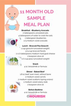11 month old baby meal plan:) Nutritionist created and approved to provide nutritionally balanced meals. health activities health care health ideas health tips healthy meals Healthy Baby Food, Healthy Meals For Kids, Kids Meals, Baby Meals, Baby Puree Recipes, Baby Food Recipes, Meal Plan For Toddlers, Baby Meal Plan, Liquid Meals