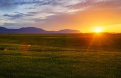 See that little sheepy there on the left? I think he must eat the tall parts of all the grass in that entire field to keep it looking perfect. - AKUREKYRI, ICELAND - photo from #treyratcliff Trey Ratcliff at http://www.StuckInCustoms.com