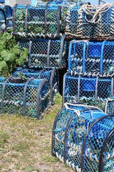 Casiers bleus | Finistère Bretagne
