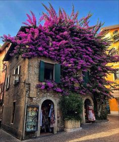 When your landscaping adds so much to the curb appeal … Beautiful #Brescia #Italy 😍 … by @amazingtravelshop #europe #photography #romantic #architecture #view #travelblogger #travels #travelguide #hotelinterior #traveler #traveling #traveltheworld #travelholic #traveleurope #wanderlust #travel #bucketlist #architecturelovers #europe #wanderlust #traveladdict #hoteldesign #inspiration #inspo #travelblog #destinationwedding #travelgram #dyi