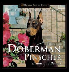 The Doberman Pinscher: Brains and Beauty gives potential owners, new converts…