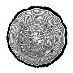 Tree rings vector image on VectorStock Ring Vector, Ring Logo, Laser Cutter Projects, Wood Logo, Tree Rings, Woodworking Logo, Logo Design, Graphic Design, Celtic Tattoos