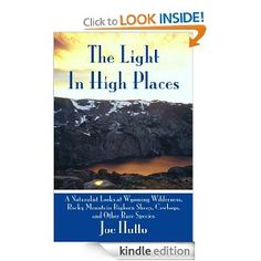 The Light In High Places: Joe Hutto: Amazon.com: Kindle Store