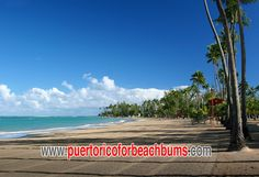 Balneario La Monserrate.  Better known as Luquillo Beach.  Possibly one of the nicest and most beautiful beaches in Puerto Rico and the world.  Located about 25 miles east of San Juan in the small town of Luquillo.