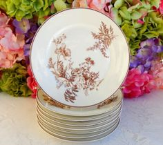 8 Beautiful Antique Haviland Limoges Porcelain Plates 1876c.