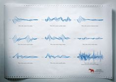 sound waves of various animals from the Lisbon Zoo