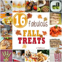 Collection of 16 Fabulous Fall Treats at TidyMom.net