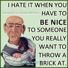 Hate it when you have to be nice Funny Signs, Funny Jokes, Hilarious, Funny Insults, Funny Laugh, Funny True Quotes, Sarcastic Quotes, Crazy Quotes, Badass Quotes