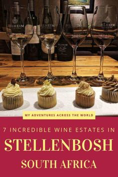A wine tour in Stellenbosch is a must when in South Africa. This post highlights the best places to do wine tasting in Stellenbosch. Wine Party Appetizers, Wine Safari, Wine House, Wine Merchant, Wine Gift Baskets, Wine Deals, Wine Delivery, Wine List, Wine Drinks