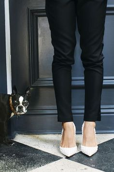 Shoes and a puppy.