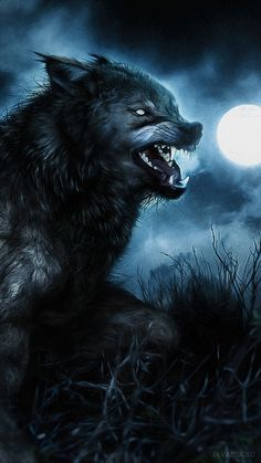 Highway to Hell ┼ Art Anime Wolf, Real Werewolf, Werewolf Art, Fantasy Wolf, Dark Fantasy, Fantasy Art, Fantasy Creatures, Mythical Creatures, Wolf Hybrid