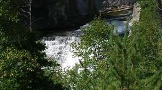 Great day walking at the Forks of the Credit Forks, Ontario, Waterfall, Hiking, Canada, Twitter, Outdoor, Walks, Outdoors