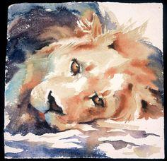 - Watercolour by Hazel Soan - Doodlewash Wildlife Paintings, Wildlife Art, Animal Paintings, Art Watercolor, Watercolor Animals, Watercolor Sketchbook, Traditional Paintings, African Animals, Artist Gallery