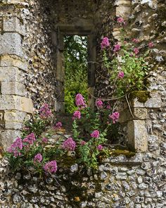 Palace Ruins window with flowers