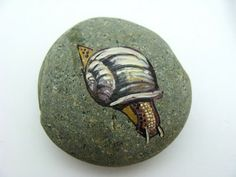 S for Snail: ...hand painted rocks...