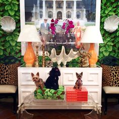 Can you spot the precious #pups in this colorful #PalmBeach #Mecox vignette? #ChristopherSpitzmiller #lamps #orchids #lucite #bench #animalprint #MecoxGardens #furniture #shopping #home #decor #design #room #designidea #vintage #antiques #garden