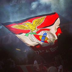 Benfica Wallpaper, Football Fans, Red, Painting, Portugal, Bear Wallpaper, Flags, Dolphins, Painting Art