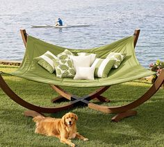 The hammock, the dog, the backdrop.....perfection