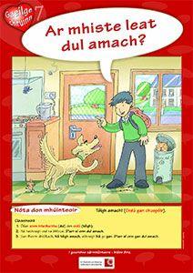 Póstaeir dírithe ar chruinneas Gaeilge, bunaithe ar na botúin is coitianta a dhéanann daltaí: Audrey Fluerot, Gaelic Words, Irish Language, Ares, Primary School, Ireland, Classroom, Posters, Culture