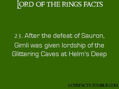 And he also went to the grey havens with Legolas.