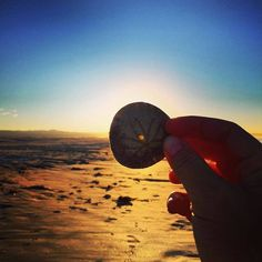 Hasta la vista amigos! Perfect sunsets #SanQuintin style! Are you ready for some #Baja? www.discoverbajacalifornia.com  -Adventure by garnetgrl at Hotel Mision Santa Maria