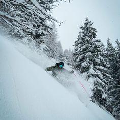 flobastien in full powder hound mode Snowboard, Skiing, Powder, Outdoor, Sports, Ski, Outdoors, Hs Sports, Face Powder