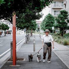 #streetsnaps #streetstyle #dogsofinstagram #japan by jamesjeanart http://ift.tt/1SyhUoS from Instagram!!