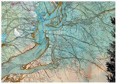 tree prints - Google Search