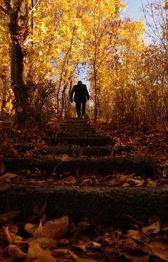 Van sonbaharda bir başka güzel.  Another beautiful autumn in Van/TURKEY. http://fotogaleri.ntvmsnbc.com/van-sonbaharda-bir-baska-guzel.html